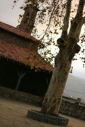 ondizguay3
