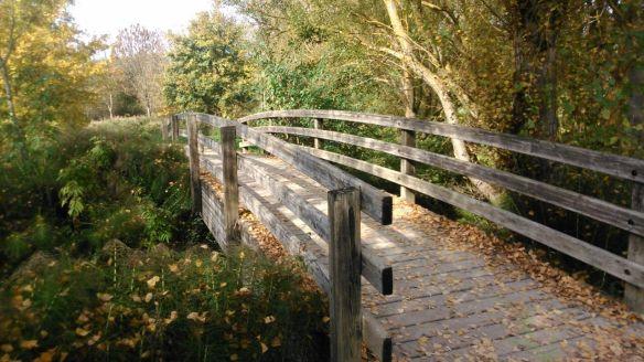 puente madera otoño bosque parque salburua