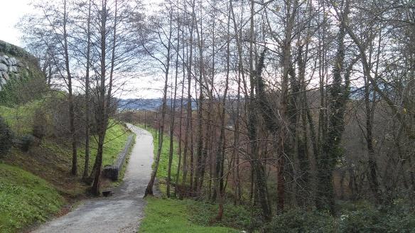 Leioa Camino Arboretum UPV/EHU UPV EHU arboles bosque parque botánico